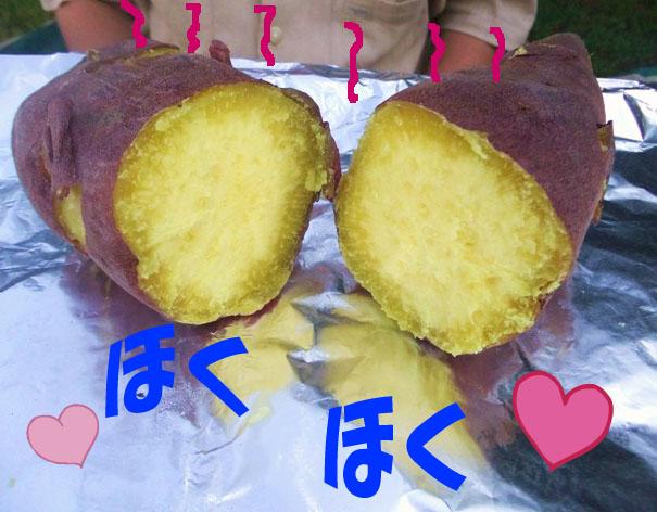 10_20110919044014.jpg