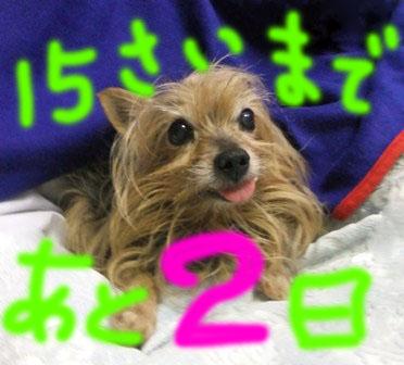 DSCF6078.jpg