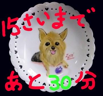 DSCF8226.jpg