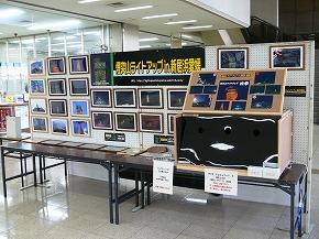 P1000244.jpg