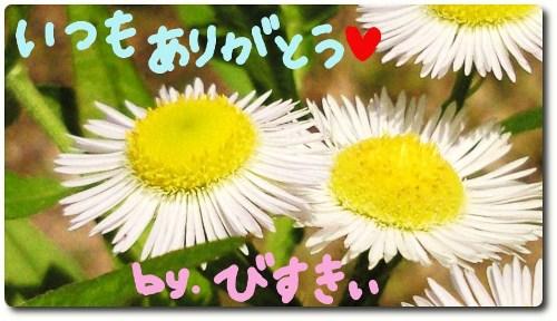 幸せのお花☆