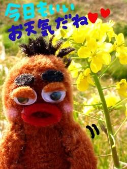 春の日差しの中で2☆