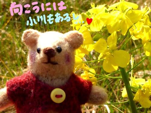 春の日差しの中で5☆