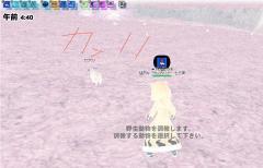 mabinogi_2008_12_08_0272.jpg