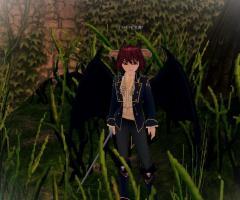 mabinogi_2008_12_16_002.jpg