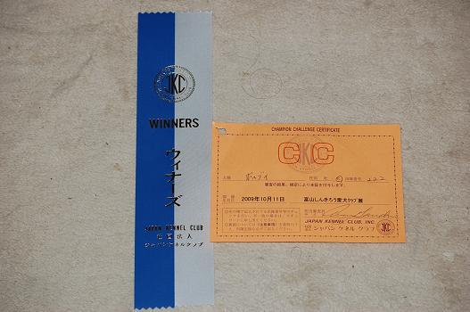 DSC_0084_win.jpg