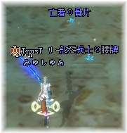 20100214_10.png