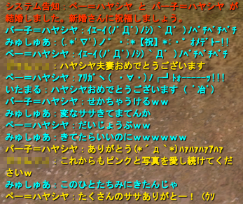 20100302_02.png