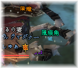 20100525_16.png