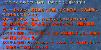 20100628_02.png