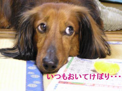 らぼ0326-1