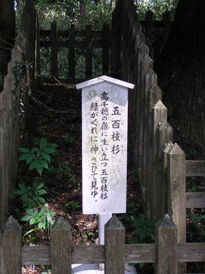 20090419 幣立神宮7