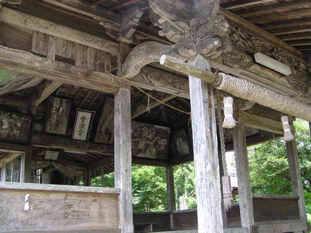 090704 坂の上神社のモミ5
