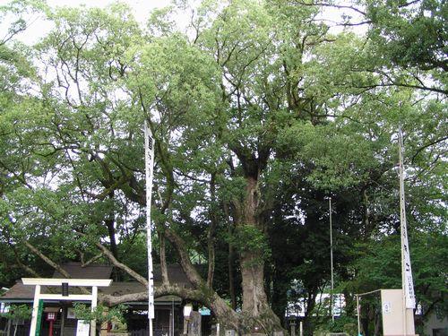 210813 青井神社7