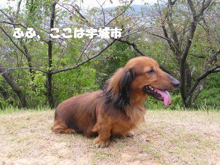 210923 岡岳公園12ー2