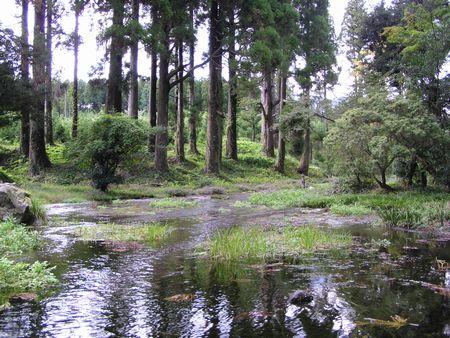 211010納池公園12