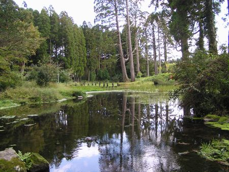 211010納池公園13