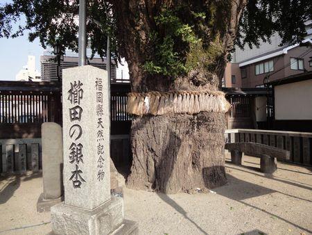 211017 櫛田神社11