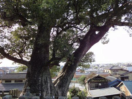 211011 小川阿蘇神社10