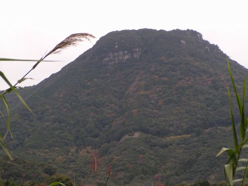 211206 龍ヶ岳1