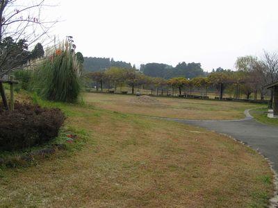 211213 矢護川公園2