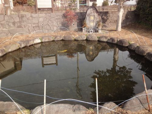 220130 菊之池跡4