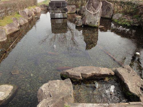 220130 前川水源2