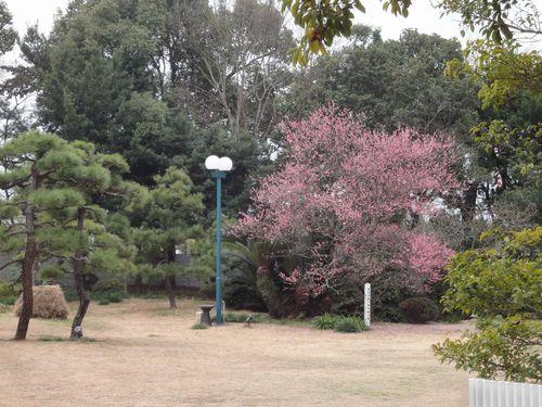 220213 旧三井港倶楽部11