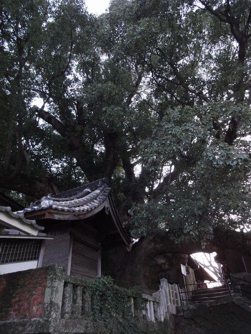 220220  大徳寺7
