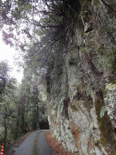 220306 きよかわ凝灰岩2