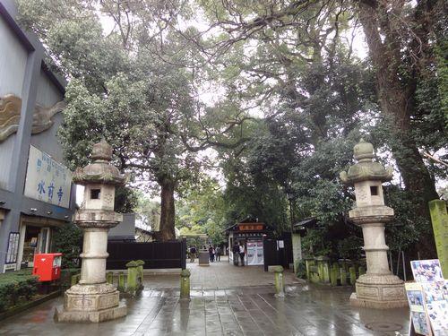 220313 水前寺公園1
