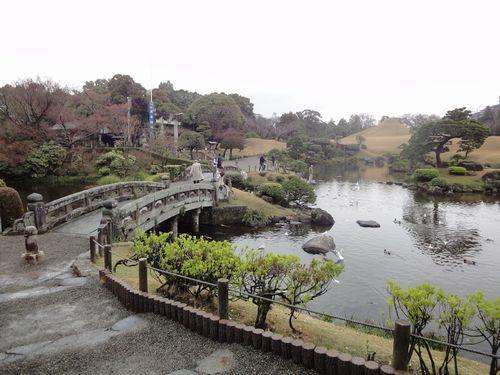 220313 水前寺公園6