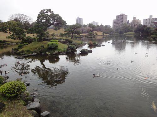 220313 水前寺公園22