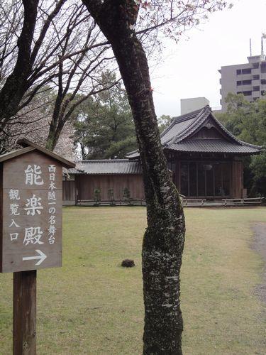 220313 水前寺公園17