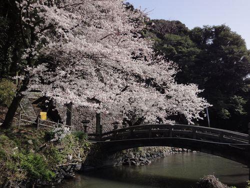20100322 瀬田神社0