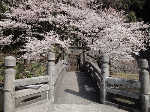 20100322 瀬田神社2