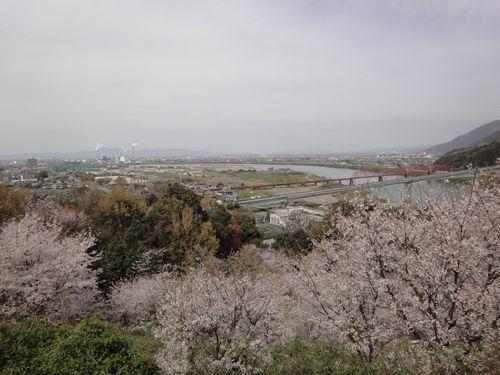 220327 遙拝神社20