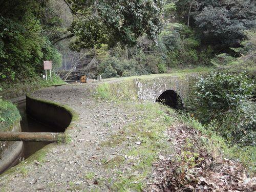 220411 雄亀滝橋5