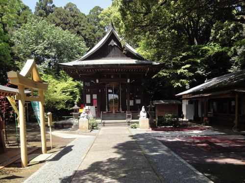 220417 日吉神社3