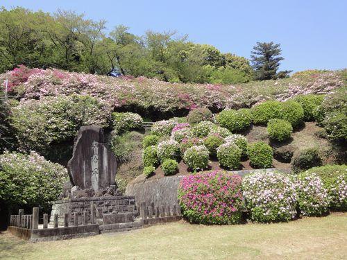 220417 日吉神社9