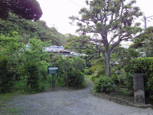 220430 小松邸5