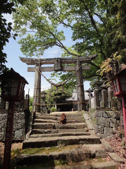 220508 永尾神社4