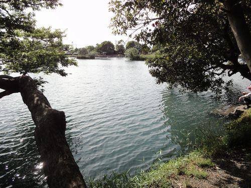 220508 浮島7