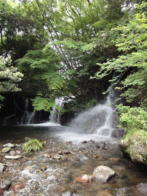 220529 小園滝2