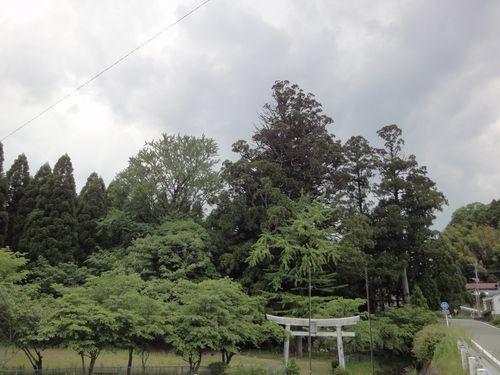 220529 平川神社0