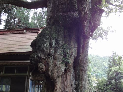 220529 平川神社4-1