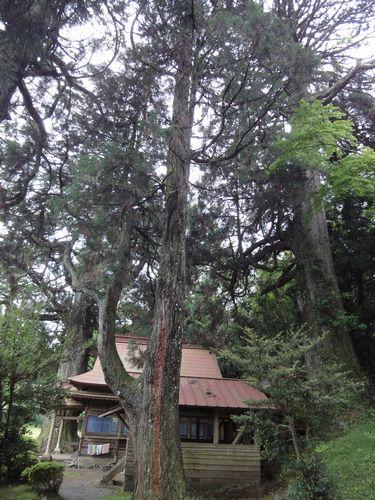220529 平川神社6