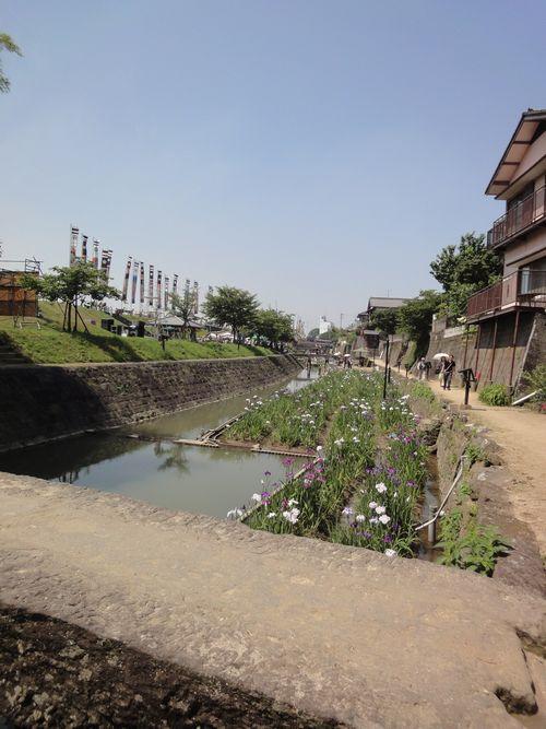 220605 高瀬裏川16