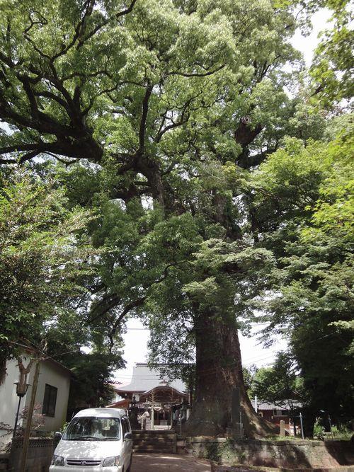 220612 小木阿蘇神社2