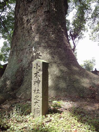 220612 小木阿蘇神社0